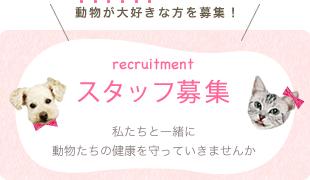 bnr_staff